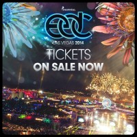 EDC Las Vegas 2014 Tickets