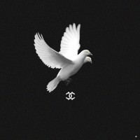 HUCCI - Wings [Free Download]